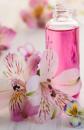 familia-olfativa-floral